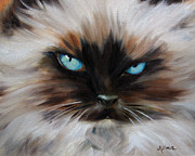 Kitten Prints Pastels Framed Prints - Himalayan Framed Print by Mary Sparrow Smith