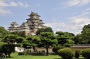 Japan Posters - Himeji Castle and Gardens Japan Poster by Andy Smy