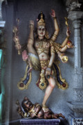 Hindu Goddess Photo Posters - Hindu goddess Kali Poster by Carl Purcell