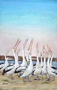 Pelican Pastels Framed Prints - Hip Hip Hooray Framed Print by Dianne  Ilka