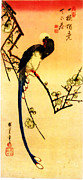 Teodora Atanasova - Hiroshige on a branch