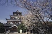 Vernacular Architecture Posters - Hiroshima Castle And Cherry Blossoms In Poster by Axiom Photographic