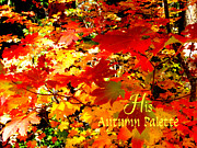 Cindy Wright Posters - His Autumn Palette Poster by Cindy Wright