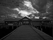City Pier Prints - Historic Anna Maria City Pier 9197439 Print by Rolf Bertram