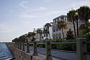Charleston Houses Prints - Historic Charleston Battery Print by Dustin K Ryan