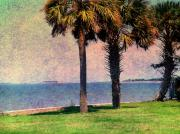 Abstract Palm Trees Photos - Historic Fort Sumter Charleston SC by Susanne Van Hulst