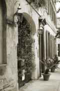 Historic Originals - Historic Home Wrought Iron Gate Charleston Sepia by Dustin K Ryan
