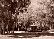 Florida House Photo Originals - Historic Koreshan by Florene Welebny