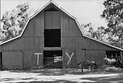 Abstract Expressionist Photo Metal Prints - Historic Ranch Tour 2 Metal Print by Lenore Senior