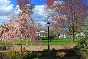 Barre Prints - Historic Town Common in Spring Print by John Burk