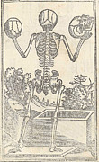 Human Skeleton Art - Historical Anatomical Illustration by Science Source