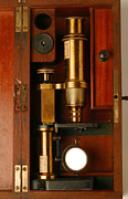 Microscope Prints - Historical Microscope Print by Mauro Fermariello