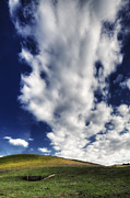 Walnut Tree Photograph Posters - Hiway of Clouds Poster by Laszlo Rekasi