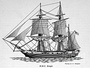 Darwin Photos - H.m.s. Beagle by Science Source