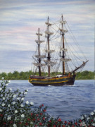 Pirate Ship Paintings - HMS Bounty by Vicky Path