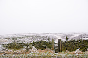 Dark Peak Prints - Hoar frost on the moor Print by Jane Haslam