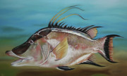 Sarasota Artist Pastels - Hog Fish by Paul Autodore