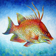 Taste Painting Posters - Hogfish Snapper Poster by Nancy Tilles
