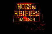 Hogs And Heifers Print by Bobby Deal