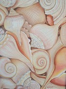 Shell Drawings Seashell Art Prints - Holding on to Summer Print by Rose Mary Gates