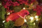 Lights Digital Art Originals - Holiday Chirp by Julius Reque