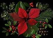 Holiday Greenery Print by Deborah J Humphries