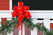 Pine Needles Photos - Holiday Red Bow by Linda Phelps