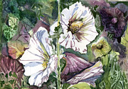 Fine Art Drawing Originals - Holly Hocks by Mindy Newman