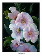 Gladiolas Originals - Hollyhock by Linda Mungerson