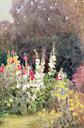 Tremieres Prints - Hollyhocks Print by Helen Allingham