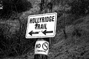 Smoking Trail Prints - HollyRidge Trail Print by Jera Sky