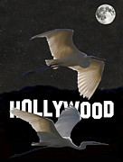 Great Birds Mixed Media Posters - Hollywood Birds Great Egrets  Poster by Eric Kempson