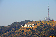 Lynn Bauer Photography Posters - Hollywood Haze Poster by Lynn Bauer
