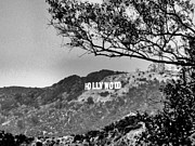 Griffith Framed Prints - Hollywood Framed Print by RJ Aguilar