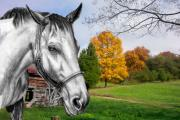 Photo Manipulation Drawings Metal Prints - Home Again Metal Print by Russ  Smith