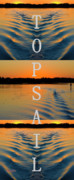 Topsail Island Posters - Home Poster by Betsy A Cutler East Coast Barrier Islands
