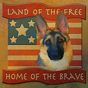 Canines Digital Art - Home of the Brave by Laurie Cook