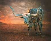 Texas Longhorn Digital Art - Home On The Range by Jan Galland