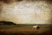 Equine Digital Art Posters - Home Sweet Home Poster by Dorota Kudyba