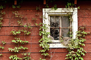 Barn Windows Posters - Home Sweet Home Poster by Jim Fox