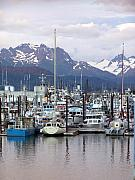 Homer Harbor Print by Marty Koch