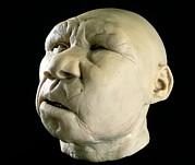 Homo Heidelbergensis Reconstruction Print by Javier Truebamsf