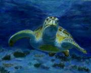 Hawaii Sea Turtle Paintings - Honaunau Honu by Michele Ross