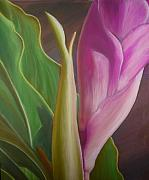 Bird Of Paradise Flower Pastels - Honduras Miracles by Teresa  Harris