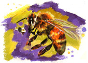 Insects Pastels - Honey Bee by Janice Lawrence