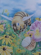 Daisies Drawings Prints - Honeybee with Daisies Print by Charity Goodwin