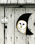 Barn Owl Prints - Hoo Tooted Print by Don McMahon