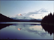 Lake Washington Pyrography Prints - Hood Trillium Lake Print by Bob Groshart