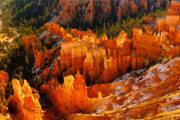 Hoodoo Prints - Hoodoo Bryce Print by Harry Spitz