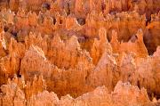Canyons Prints - Hoodoos And Other Eroded Cliffs Light Print by Taylor S. Kennedy